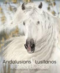 ANDALUSIANS LUSITANOS PURA RAZA ESPAÑOLA / PURO SANGUE LUSITANO