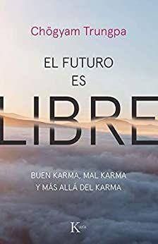EL FUTURO ES LIBRE : BUEN KARMA, MAL KARMA Y MÁS ALLÁ DEL KARMA