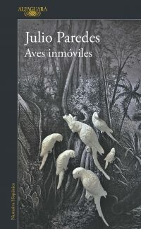 AVES INMOVILES