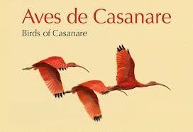 AVES DE CASANARE - BIRDS OF CASANARE